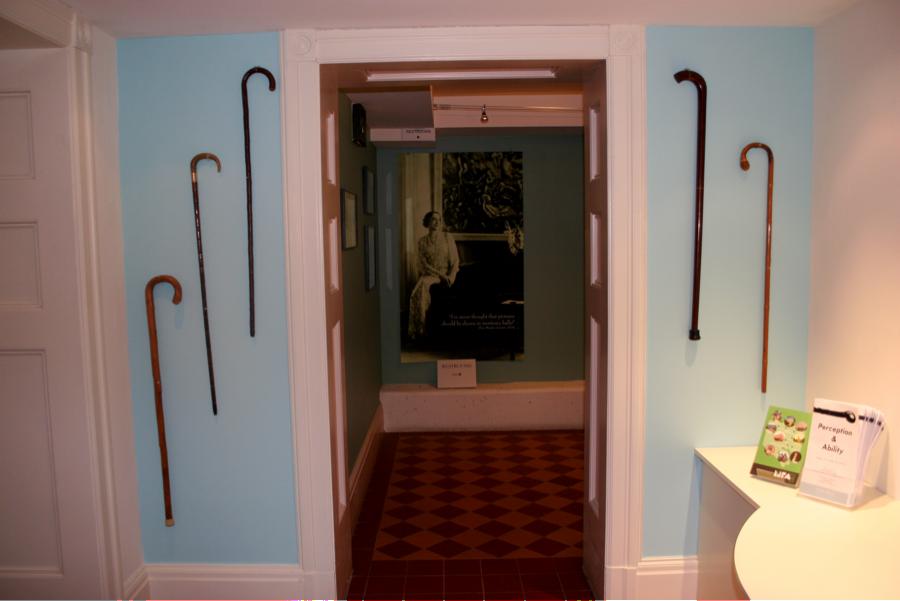 exhibit of walking canes